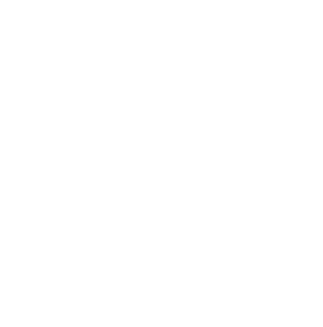 logo ID PROTECT